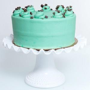 cami cakes